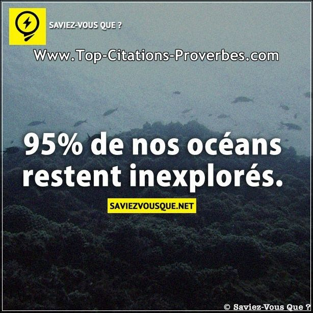 Citation_courte__95pourcent_de_nos_oceans_restent_inexplores._03433