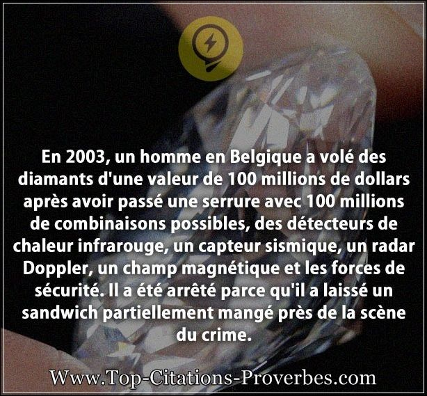 citation_crime__En_2003_un_homme_en_Belgique_a_vole_des_diamants_dune_valeur_de_100_millions_de_d_0162