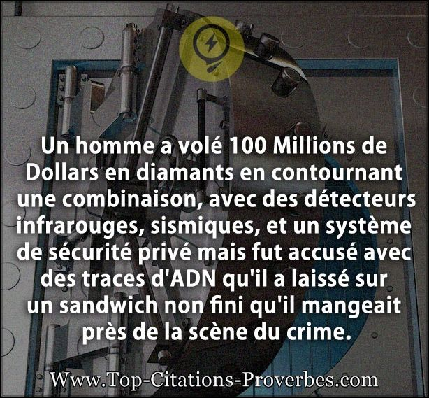 citation_crime__Un_homme_a_vole_100_Millions_de_Dollars_en_diamants_en_contournant_une_combinaison_01037
