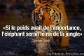 Citation courte :
