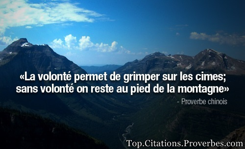 Citation Persévérance Motivation La Volonté Permet De