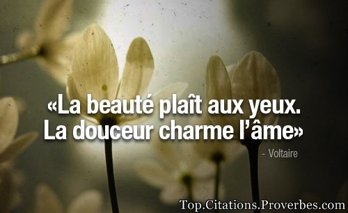 Beauté Archives Page 84 Sur 84 Top Citations Proverbes