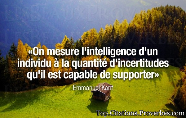 citations : On mesure l'intelligence d'un individu à la quantité d'incertitudes qu'il est capable de...