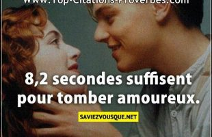 8,2 secondes suffisent pour tomber amoureux.