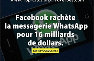 Citation courte : Facebook rachète la messagerie WhatsApp pour 16 milliards de dollars.