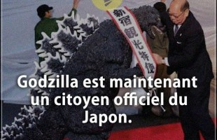 Citation courte : Godzilla est maintenant un citoyen officiel du Japon.