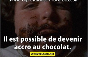 Citation courte : Il est possible de devenir accro au chocolat.