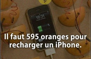 Citation courte : Il faut 595 oranges pour recharger un iPhone.