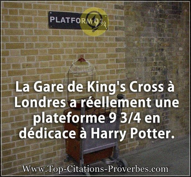 Citation courte la gare de king s cross londres a r ellement une platefor - Gare king cross londres ...