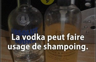 Citation courte : La vodka peut faire usage de shampoing.