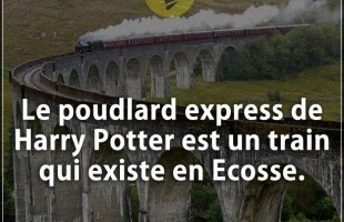 Citation courte : Le poudlard express de Harry Potter est un train qui existe en Ecosse.