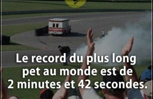 Citation courte : Le record du plus long pet au monde est de 2 minutes et 42 secondes.