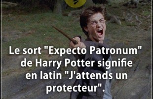 "Citation courte : Le sort ""Expecto Patronum"" de Harry Potter signifie en latin ""J'attends un protect..."