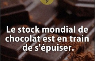 Citation courte : Le stock mondial de chocolat est en train de s'épuiser.