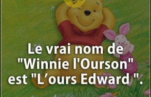 "Citation courte : Le vrai nom de ""Winnie l'Ourson"" est ""L'ours Edward""."