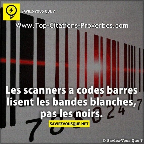 scanner Archives - Top Citations Proverbes