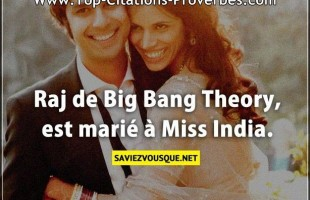 Raj de Big Bang Theory, est marié à Miss India.