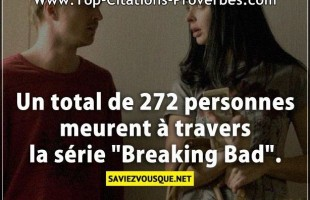 "Un total de 272 personnes meurent à travers la série ""Breaking Bad""."