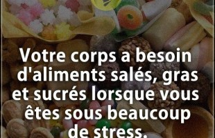 Citation courte : Votre corps a besoin d'aliments salés, gras et sucrés lorsque vous êtes sous beauc...