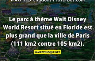 Le parc à thème Walt Disney World Resort situé en Floride est plus grand que la ville de Paris (111 ...