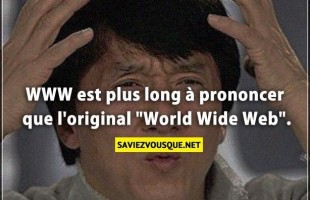 "WWW est plus long à prononcer que l'original ""World Wide Web""."