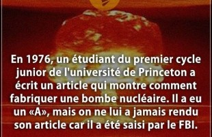 Citation article : En 1976, un étudiant du premier cycle junior de l'université de Princeton a écrit...