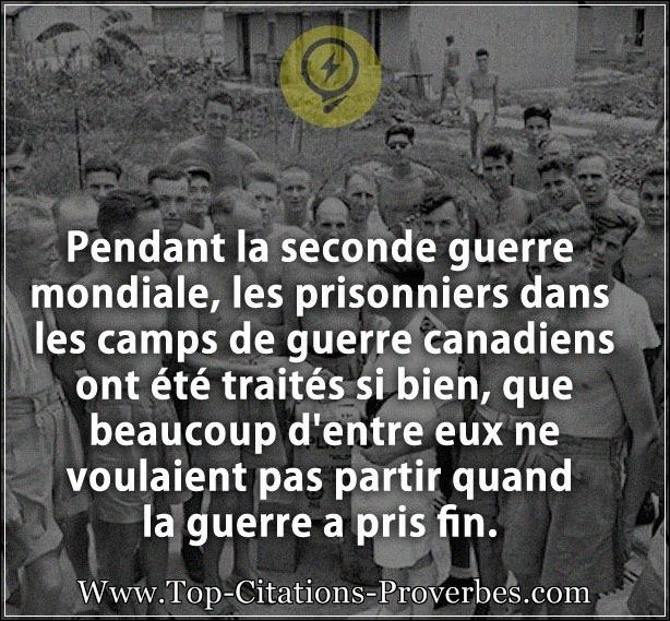 Citation Beaucoup Pendant La Seconde Guerre Mondiale Les