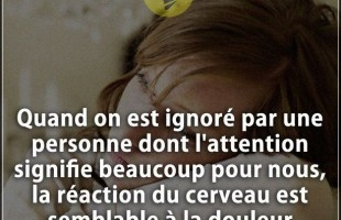 Citation beaucoup : Quand on est ignoré par une personne dont l'attention signifie beaucoup pour nou...