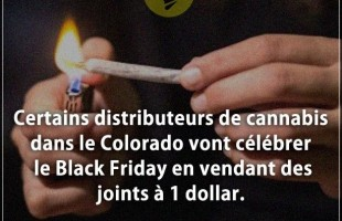 Citation but : Certains distributeurs de cannabis dans le Colorado vont célébrer le Black Friday en ...