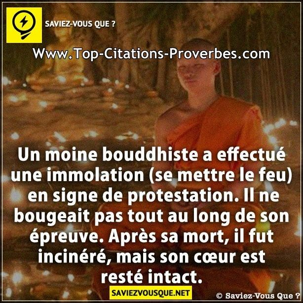 citation c ur un moine bouddhiste a effectu une immolation se mettre le feu en signe de. Black Bedroom Furniture Sets. Home Design Ideas