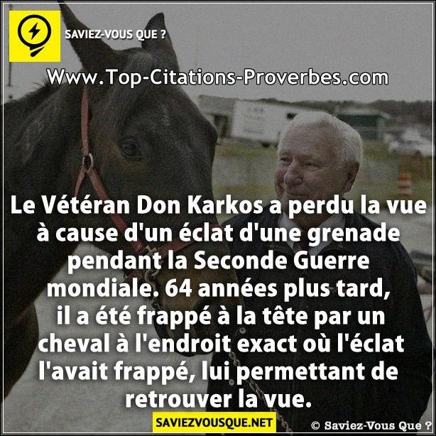 Citation Cause Le Vétéran Don Karkos A Perdu La Vue à