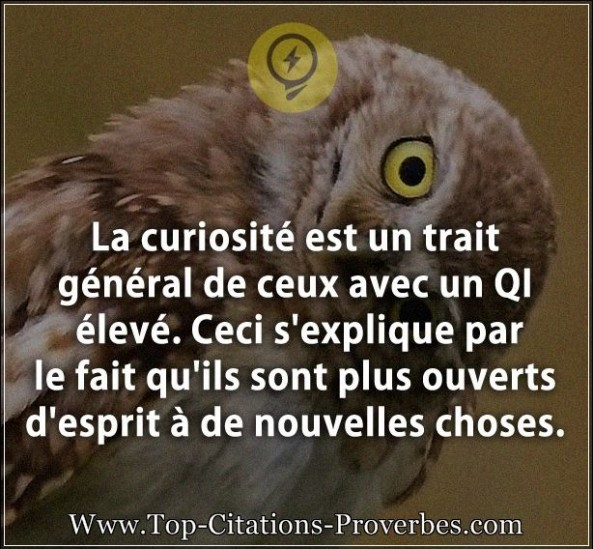 Citation Esprit Archives Page 10 Sur 10 Top Citations