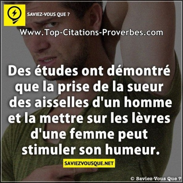 citation humeur archives page 3 sur 6 top citations proverbes. Black Bedroom Furniture Sets. Home Design Ideas