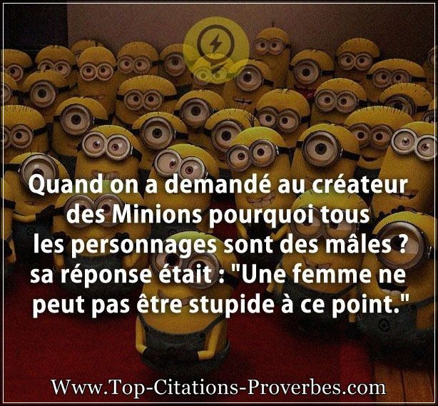 citation femme quand on a demand au cr ateur des minions pourquoi tous les personnages sont. Black Bedroom Furniture Sets. Home Design Ideas