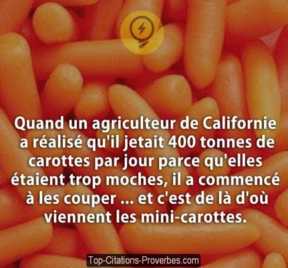 Citation vie archives page 10 sur 75 top citations - Quand recolter les carottes ...